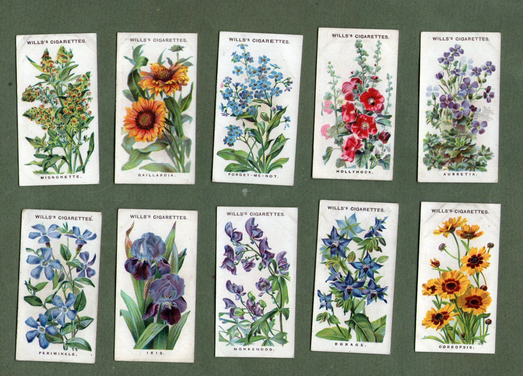 Collectable Cigarette Cards Set Old English Garden Flowers
